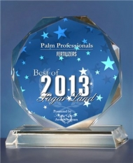 Houston's Award Winning Palm Tree Service And Installation Company