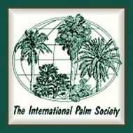 Houston's Leading Palm Tree Consultant And Company
