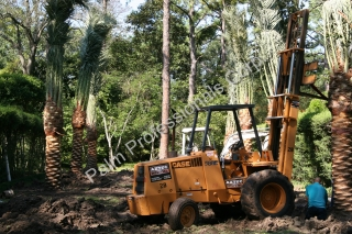 Radio Communication Between The Tree Specialist In The Back Yard And The Crane Operator In The Street Is Crucial